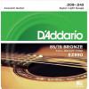 009 Acoustic Guitar Strings