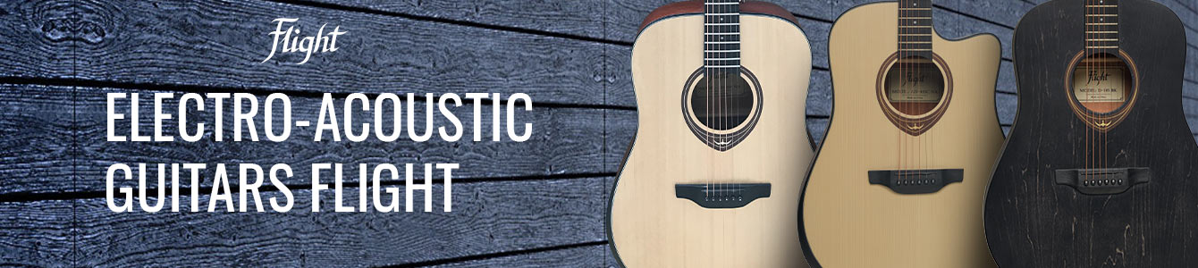 Flight electro acoustic